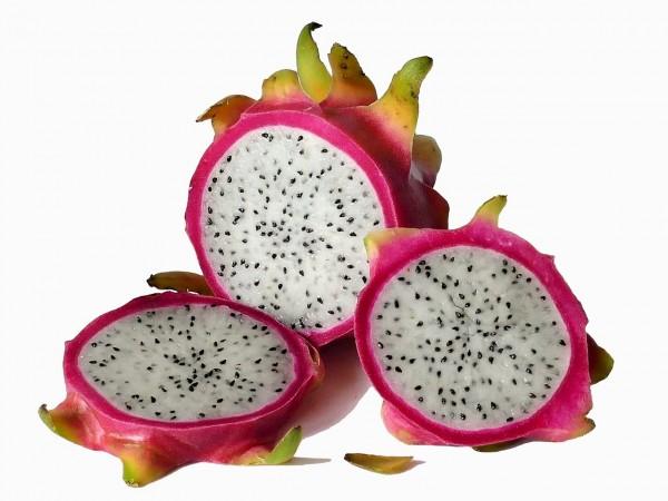 E-Head - Drachenfrucht